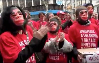 spagna-scimmie-gorilla-aborto