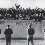 Freedom - libertà